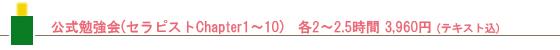 公式勉強(セラピストChapter1~10) 各2~2.5時間3,960円(テキスト込)
